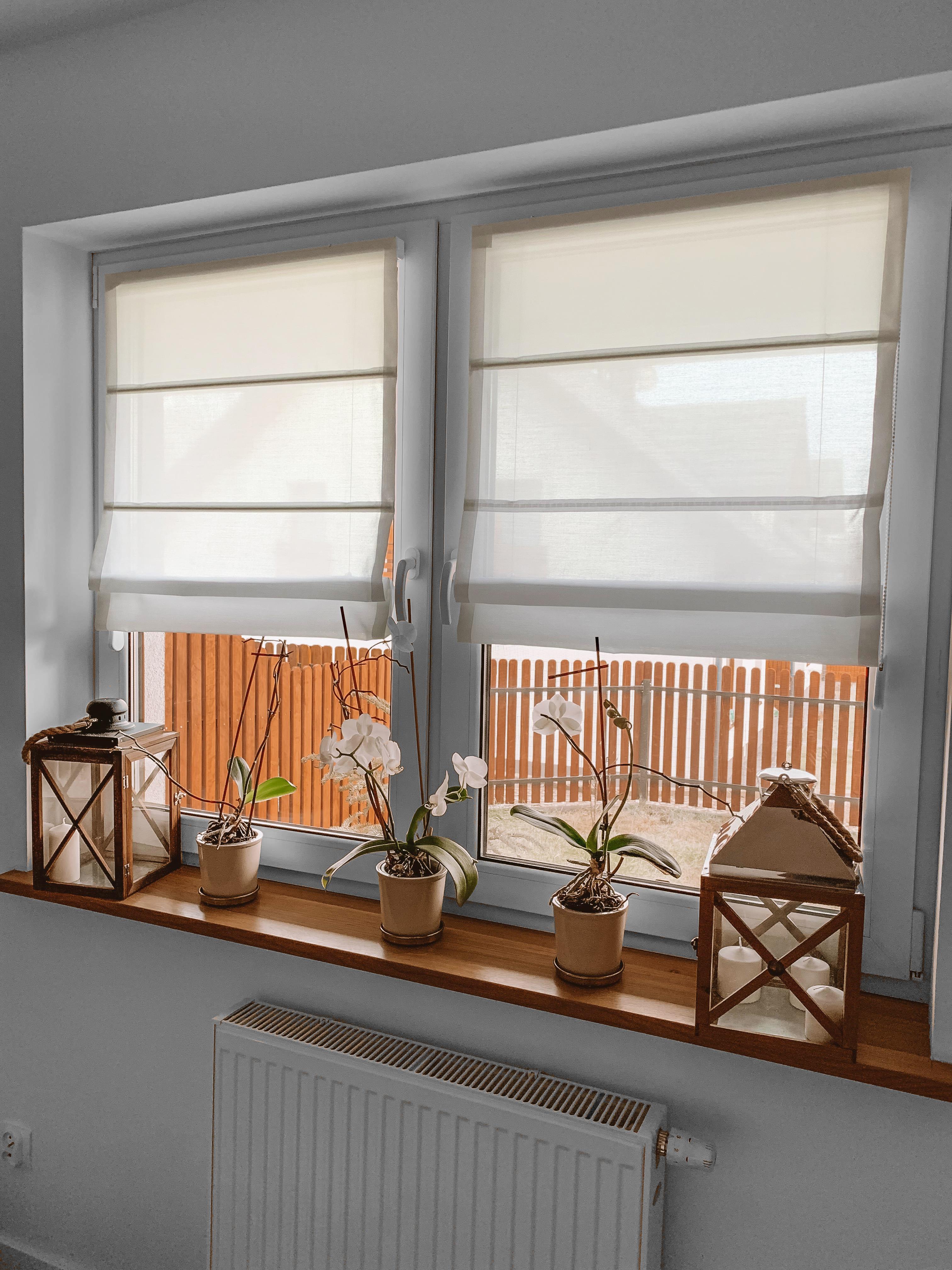 rolety rzymskie na oknie nasze domowe pielesze